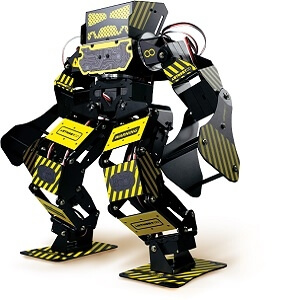 超級安東尼格鬥機器人